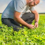 Dominik Pamer - Agrardienstleistungen